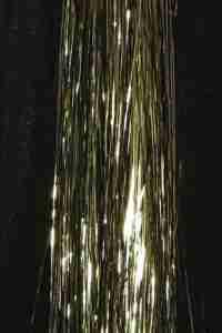Platinum - Pure Elegance